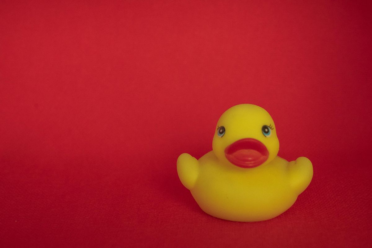 """If you don't know, now you know: What the term """"lame duck"""" actually means"""